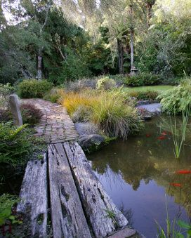 1000 ideas about pond design on pinterest koi ponds for Native garden designs nz