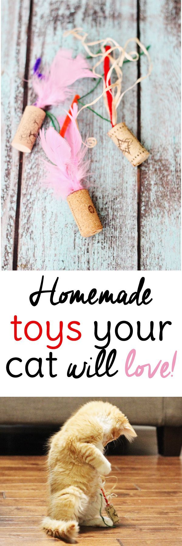 Your cat will love these easy homemade cat toys made from wine corks.  Don't have time to make toys? Come see our selection! #grandjunction #petstore