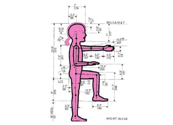 Anthropometry Of A 4 Year Old Child Google Search สมุด