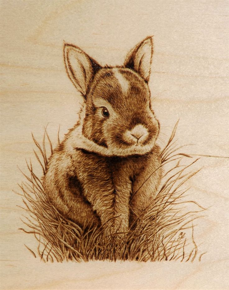 """Best Foot Forward"" Little Bunny Rabbit in the Grass by Cara Jordan Pyrography/Woodburning"