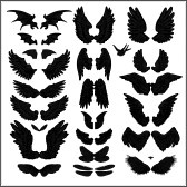 Google Image Result for http://us.cdn4.123rf.com/168nwm/pathique/pathique1203/pathique120300028/12658606-vector-set-of-wings.jpg