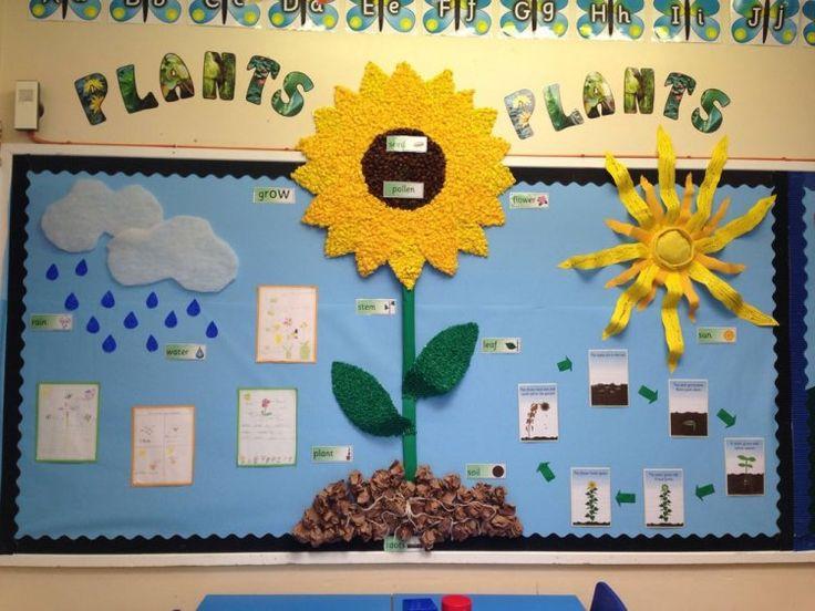 Plants, Pollen, Seeds, Grow, Flower, Leaf, Water, Rain, Clouds, Soil, Display, Classroom Display, Early Years (EYFS), KS1 & KS2 Primary Teaching Resources