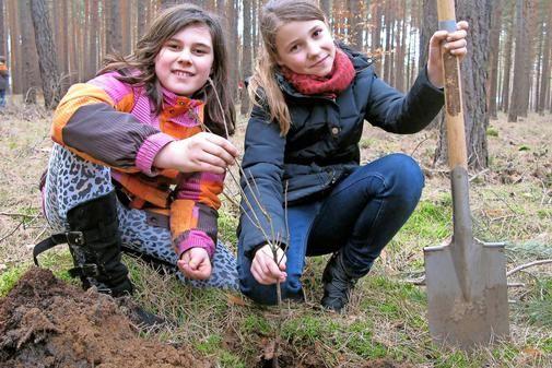 Im vergangenen Jahr zogen zwei zehnjährige Mädchen mit der Spardose durch Fichtenwalde, um den Wald zu retten. Monate später laufen sie mit ihren Mitschülern...