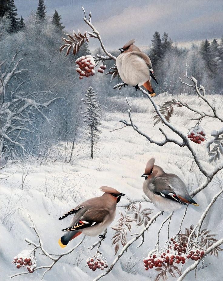 Картинки птиц в анимации