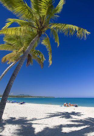 #Playa Dorada