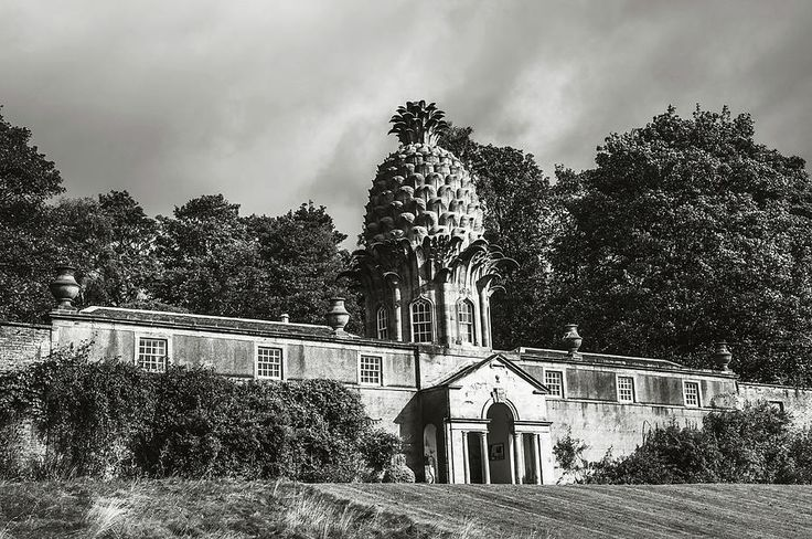 Dunmore Pineapple. Black And White Photograph by Jenny Rainbow