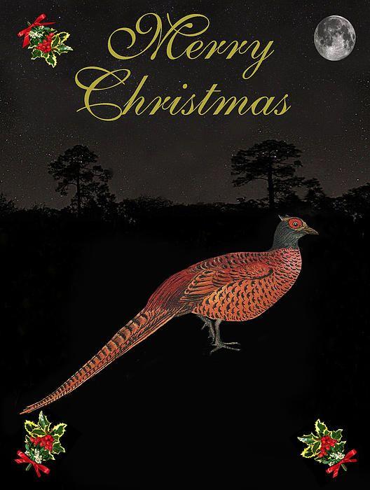 Christmas Pheasant - Customised Christmas Cards Fine Art America