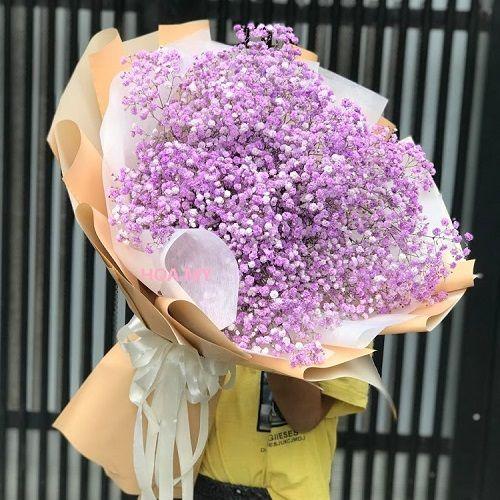 Hoa Baby Tím Tươi Làm Hoa Bi Khô Đẹp-Giá Rẻ Sale 600.000Đ ...
