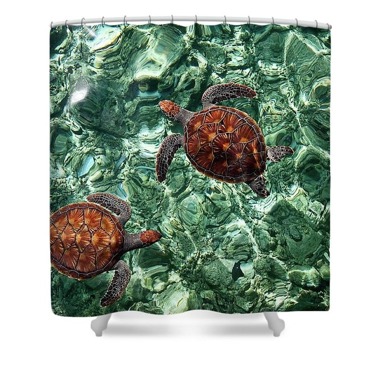 """Fragile Underwater World. Sea Turtles In A Crystal Water. Maldives Shower Curtain by Jenny Rainbow.  This shower curtain is made from 100% polyester fabric and includes 12 holes at the top of the curtain for simple hanging.  The total dimensions of the shower curtain are 71"""" wide x 74"""" tall."""
