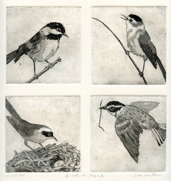 Bird in Hand Fine Art Etching of Four Birds by stephaniemartinart, $180.00