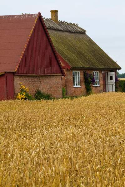 Sweden- Yet looks like an English country cottage has been stuck in a field somewhere in the US.