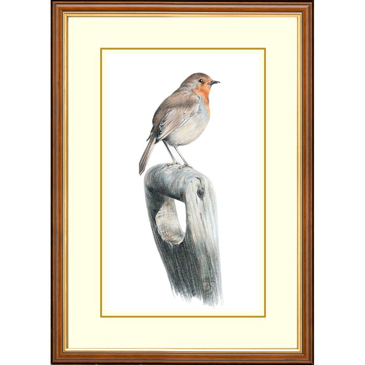 'Wintering Birds' - Robin #gifts #wildlife #painting #robin #winter