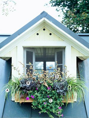 Window box ideas. Must do window boxes on the side of the garage.