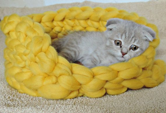 Chunky Cat Bed. Cats love to hide and craw into tight spaces. This super chunky merino bed is super cozy and soft would make a great bed for your