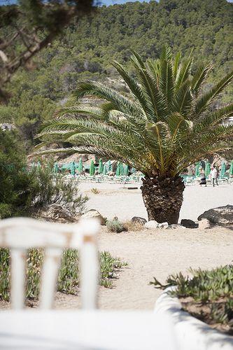 view from Elements Ibiza, Ibiza beach restaurant on Benirras - White Ibiza
