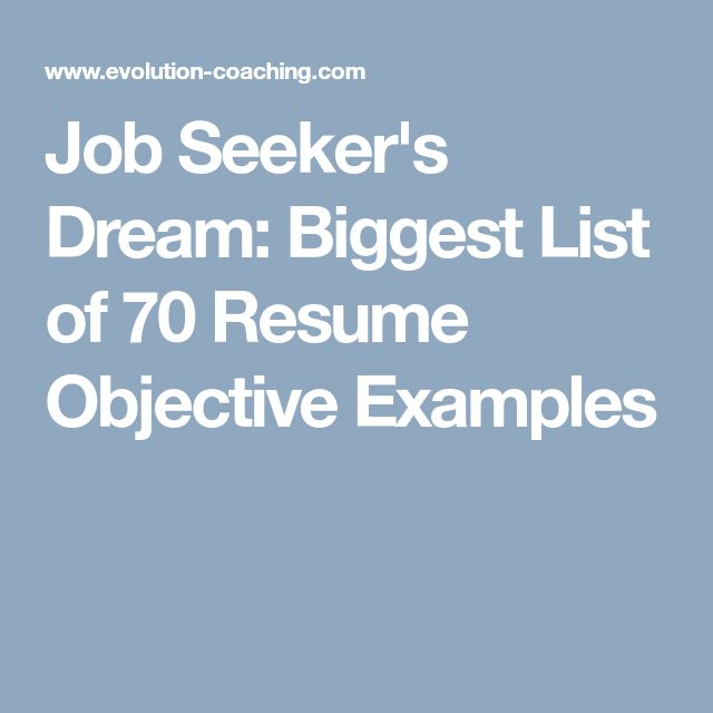 Job Seeker's Dream: Biggest List of 70 Resume Objective Examples