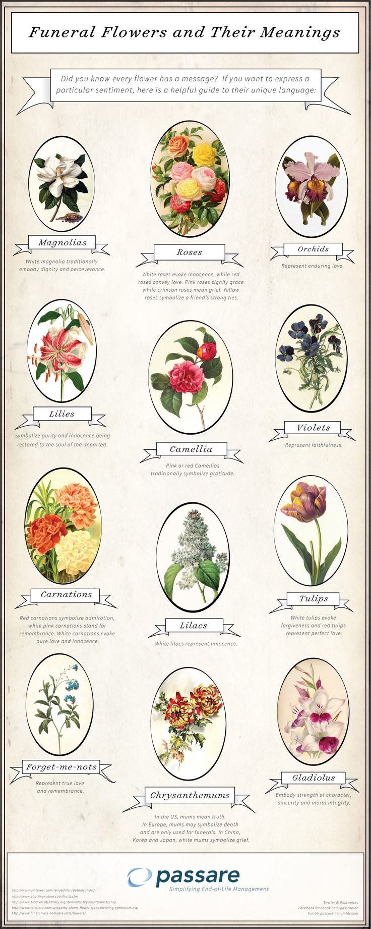 Funeral Flowers and their Meaning. Shared via Passare.
