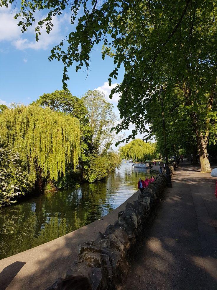 Thames, Windsor