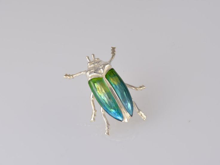 Jewel Beetle Brooch. NZ$189 Silver. Our signature 'Jewel Beetle' pin brooches are handmade in our Nelson workshop. Beautifully crafted in sterling silver, the beetle wings are delicately coloured with UV acrylic resin. Each one is slightly different due to the unique colour blending process. More colour options are available on request. Jewellery made @Jewel Beetle in Nelson, New Zealand.