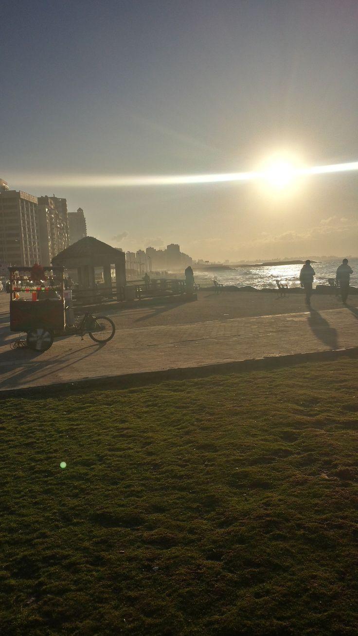Sunshine on Sidi Beshr Beach - Alexandria (Egypt)