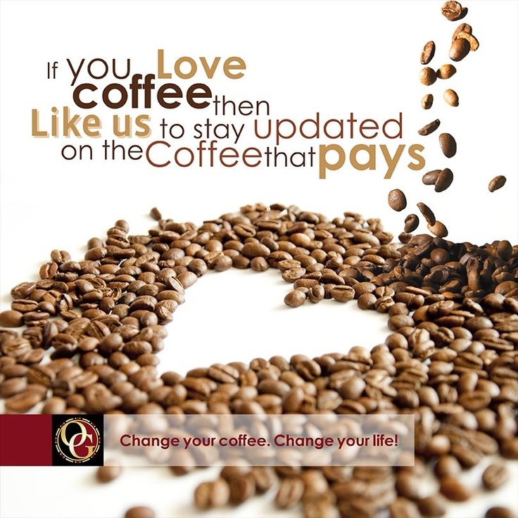 43 best Organo Gold images on Pinterest | Black coffee, Gourmet and ...