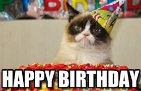 Image result for cat birthday meme