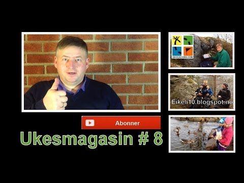 ▶ Ukesmagasin # 8 Vinter aktiviteter for deg uten snø, bloggen Eikeli10 og Østensjøvannet i Oslo - YouTube