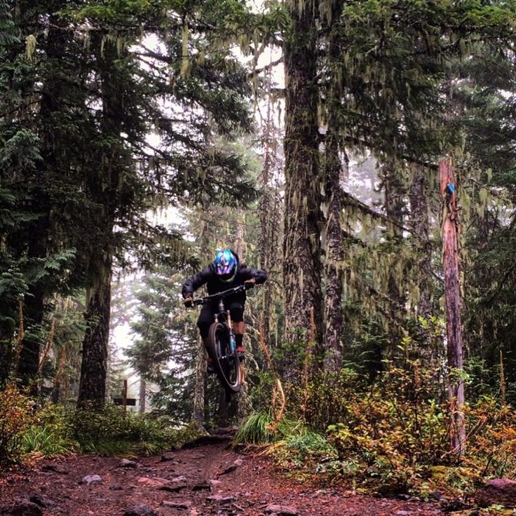 Timberline to Town Mountain Bike Trail in Rhododendron, Oregon || SINGLETRACKS.COM