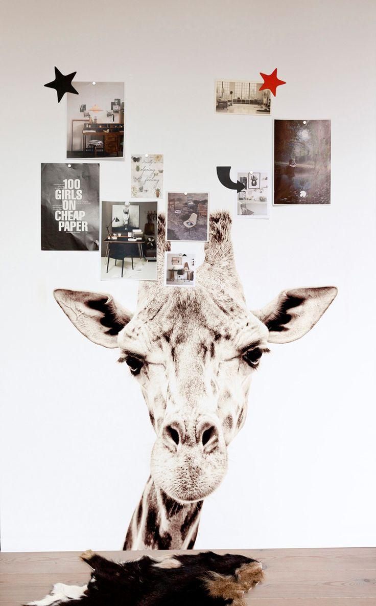 Magnet Wallpaper Giraffe - Groovy Magnets