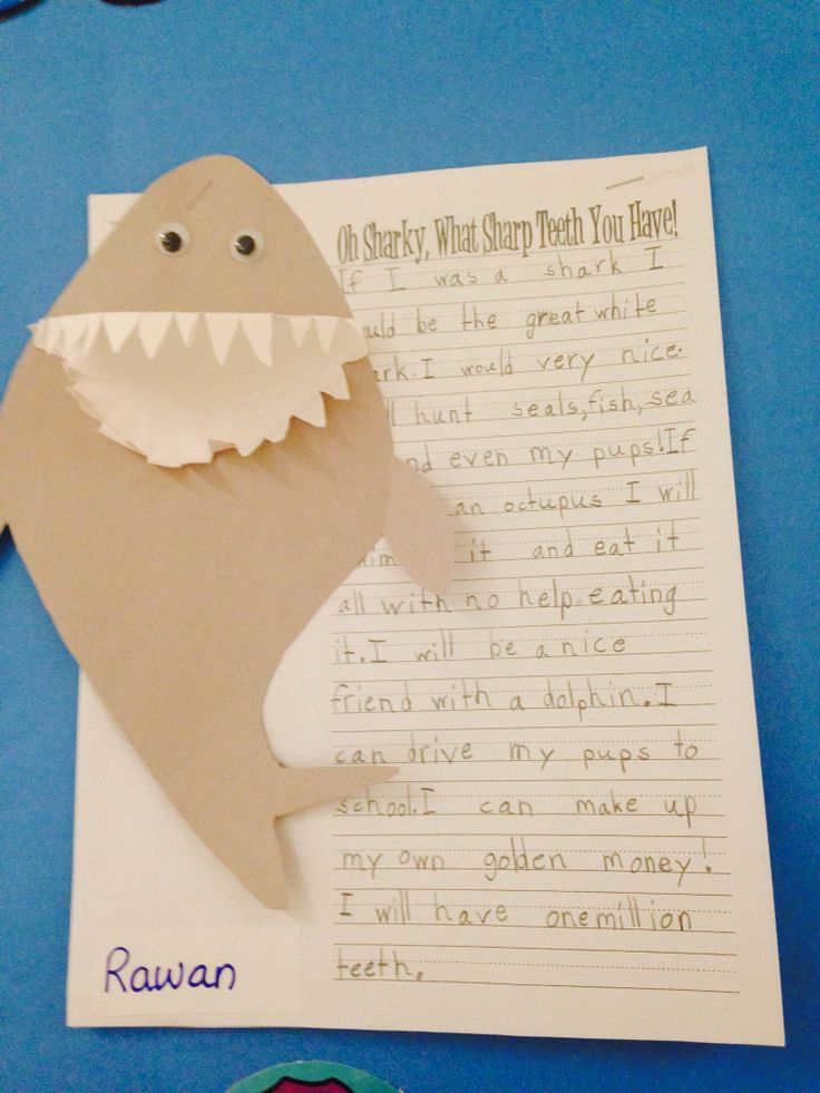 Shark writing, underwater theme