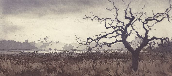 Chrissy Norman a printmaker with a passion for Trees   Chrissy Norman