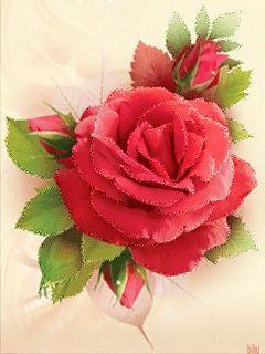 Красивый Цветок!!