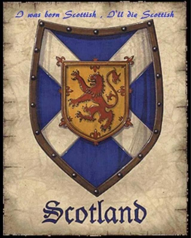 Scottish Flag Tattoo Ideas: 94 Best Images About Tatoos On Pinterest
