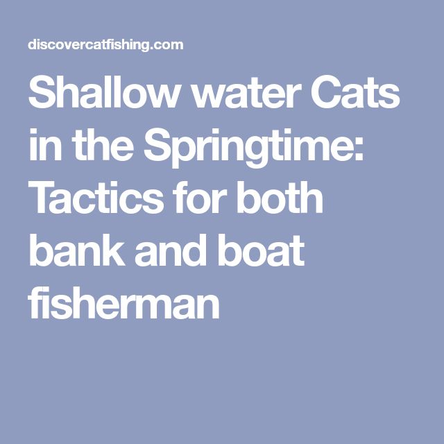 Shallow water Cats in the Springtime: Tactics for both bank and boat fisherman