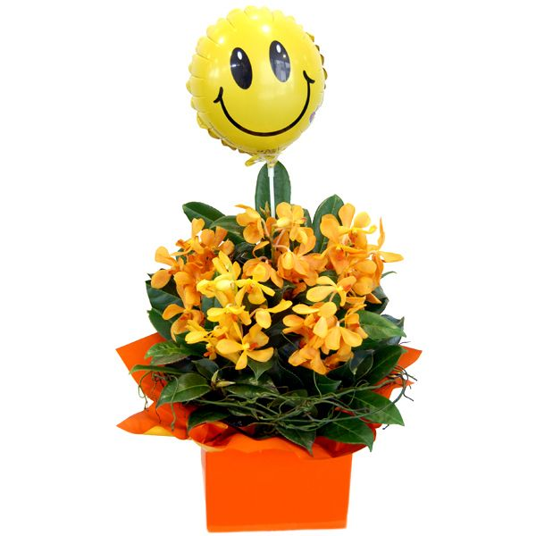 Melbourne Florist are the flower experts for flower delivery in Melbourne. You can order flowers, plants and gifts for business or private occasions through our secure online shopping cart system, with same day delivery to most Melbourne suburbs. For more information, please visit: http://www.melbourneflorist.com.au