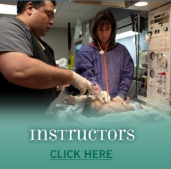 NRP Hospital Based Instructor:  There's an attraction to a process that succeeds. ; )