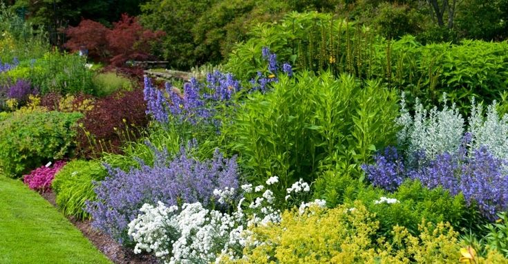 Principles of Design in your Garden | My Garden Life