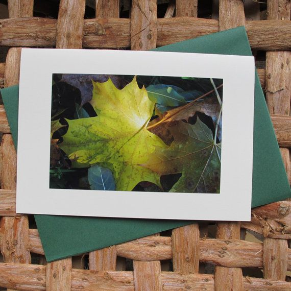 Large photo greetings card. Autumn leaves 2. by Saraphir on Etsy