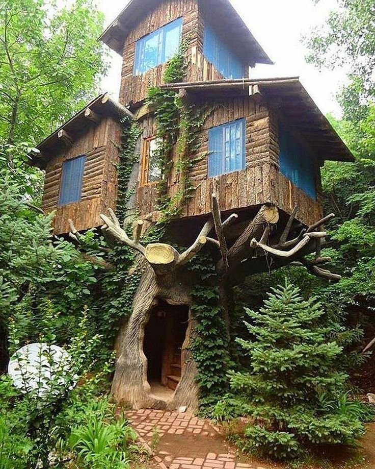 Famous Tree Houses 617 best tree houses images on pinterest | architecture