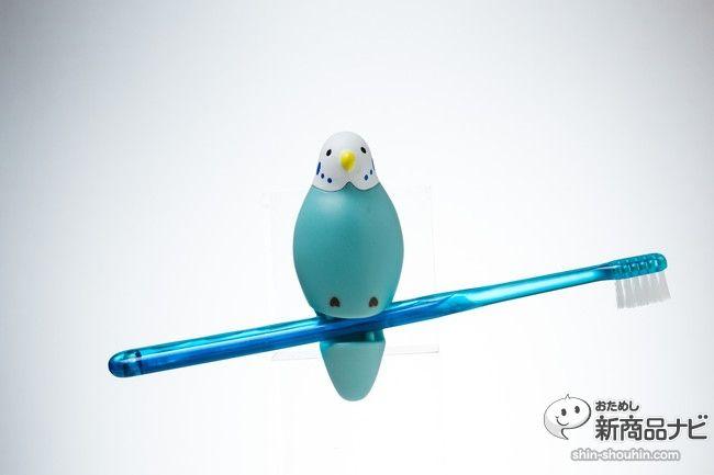 洗面所にちょこん!『トゥースブラシホルダー』はインコ型の歯ブラシ ... トゥースブラシホルダーIMG_2430
