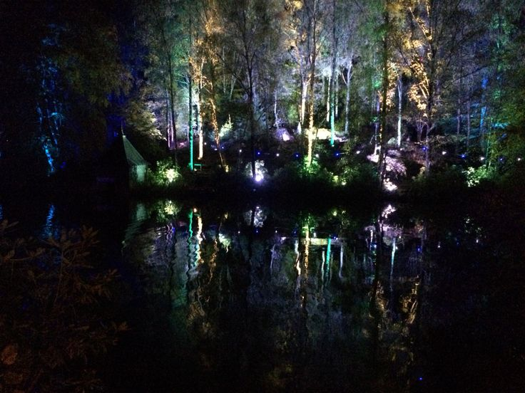 Enchanted forest, pitlochry