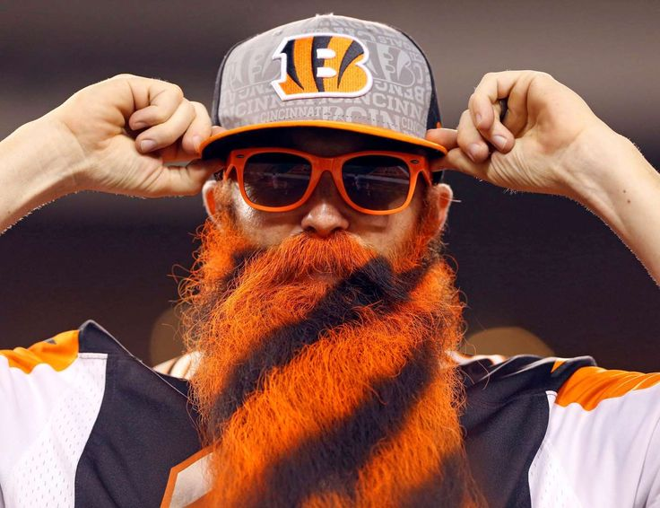 Cincinnati Bengals -  A Cincinnati Bengals fan shows support in the stands against the New York Giants in a preseason NFL football game at Paul Brown Stadium on Aug. 14 in Cincinnati. -  © Aaron Doster/USA TODAY Sports