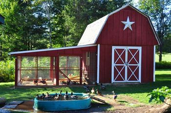 Chicken and Duck Combo Coop!  This is what I want to build once we have a bigger place! This is amazing!