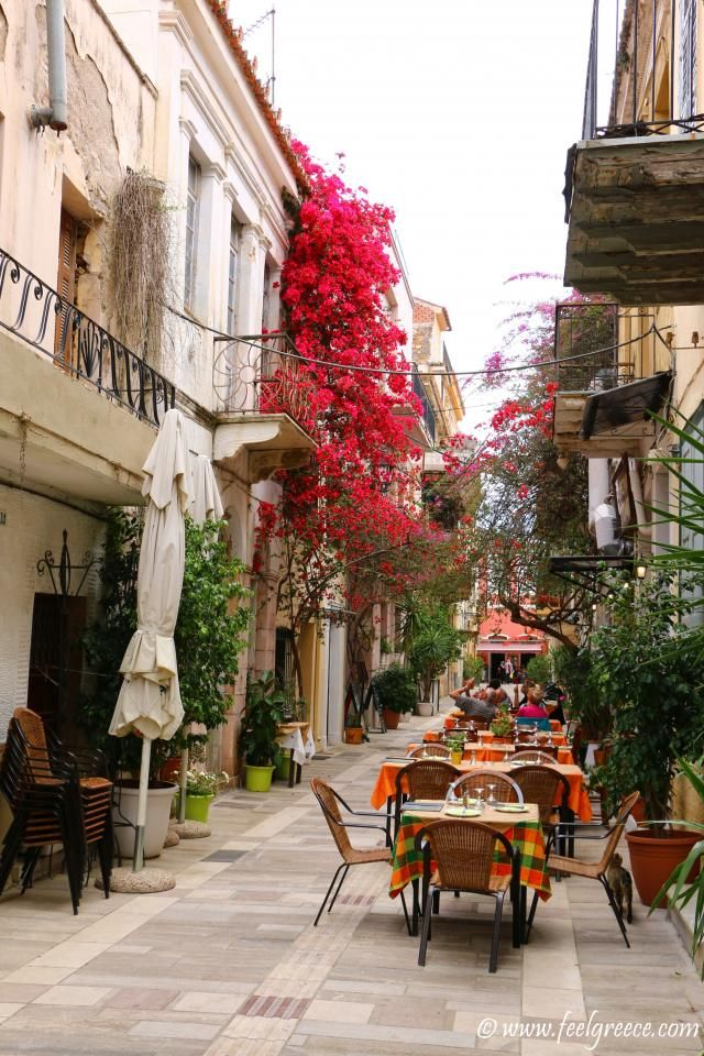 Colorful street with Bougainvillea; photo from Nafplio, Argolis Region