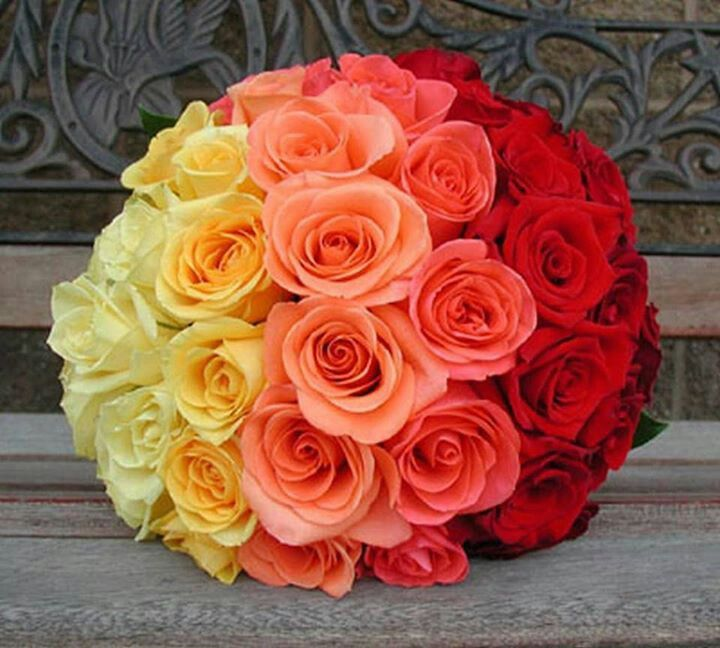 Wedding Bouquets With Rainbow Roses : Rainbow rose wedding bouquet products i love