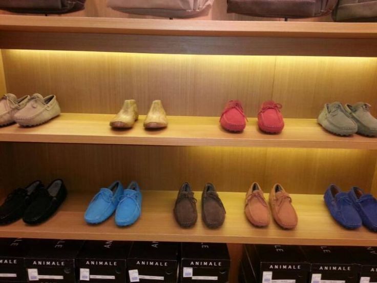 Men Shoes - Animale