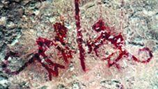 ARTE RUPESTRE introducción petroglifos pinturas rupestres