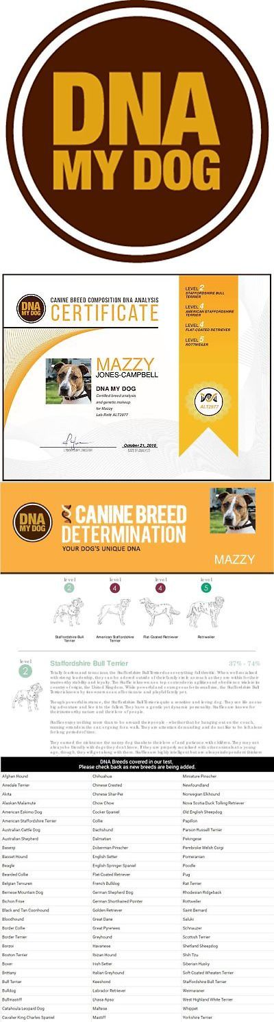 Other Dog Health Care 134753: Dna My Dog - Canine Breed Identification Test Kit - At-Home Cheek Swab Kit - ... -> BUY IT NOW ONLY: $68.98 on eBay!