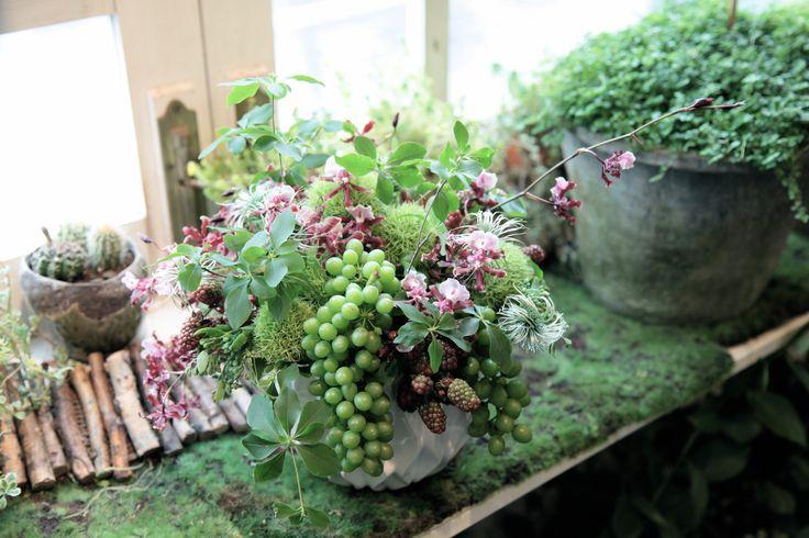フラワーアレンジメント/ぶどう/花どうらく/花屋/http://www.hanadouraku.com/flower arrengement/