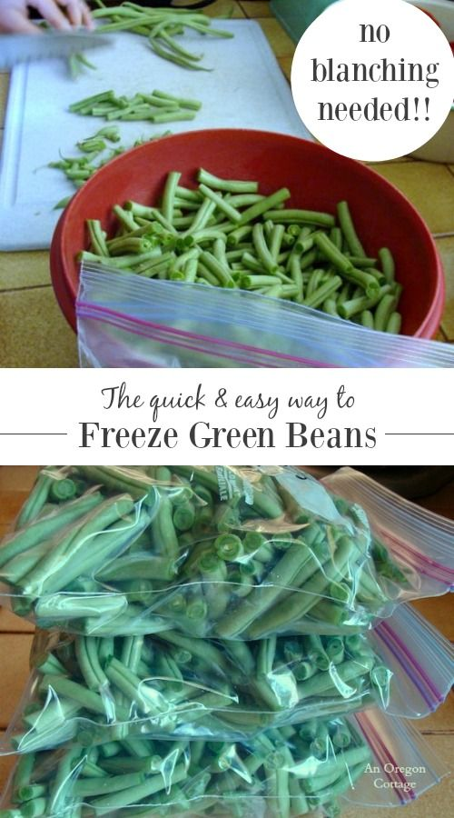 How To Freeze Green Beans Without BlanchingAn Oregon Cottage by Jami Boys | Recipes, Gardening & DIY